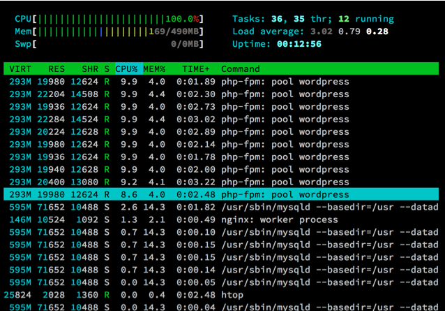 Figure 5: Htop at 25 seconds into the test