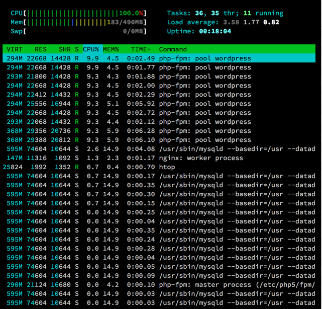 Figure 3: Htop at 25 seconds into the test